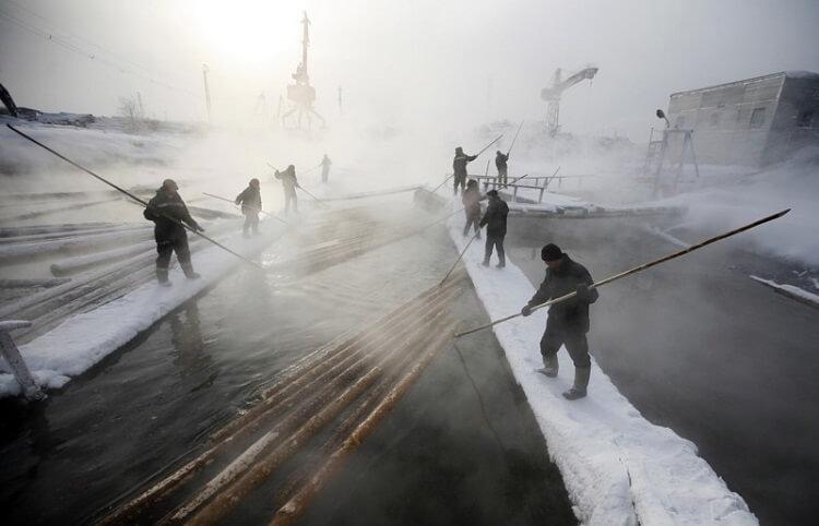 Опасная работа: 20 самых рискованных профессий на планете
