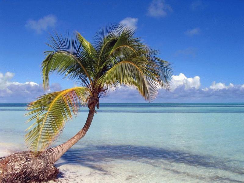 Самые красивые пляжи в мире: 30 фото
