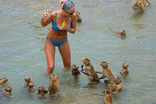 50 самых смешных летних снимков из всех уголков мира